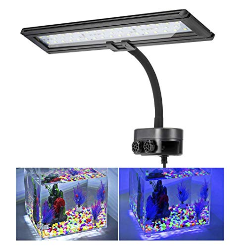 (Hygger Blue White LED Aquarium Lights Clip on Fish Tank Lamp Lighting for Saltwater Freshwater with Gooseneck Clamp 21-watt)