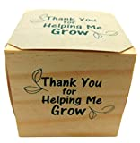 Teacher Gift Basil Plant Pot Set Thank You for Helping Me Grow Wooden Cube, 4 inch
