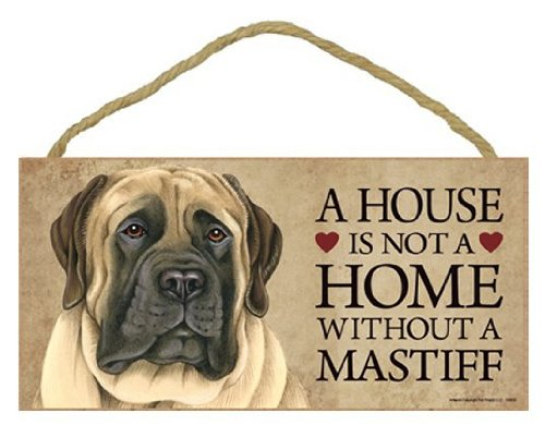 A house is not a home without English Mastiff - 5