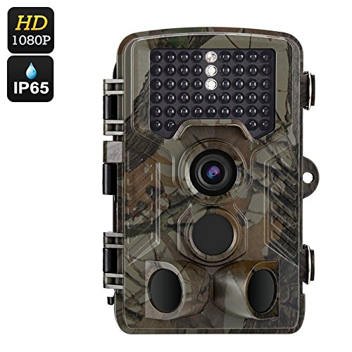 FHD Digital Hunting Trail Camera - 1080P, 12 Months Stand-By, 0.6 Seconds Fast Shooting, 2.4 Inch Display, IR Cut, 20M, 65ft/20m, Micro SD card, up to 32GB, Night IP56 rated - App Glasses On Android For Trying