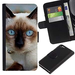 Siamese Cat Blue Eyes Pet - la tarjeta de Crédito Slots PU Funda de cuero Monedero caso cubierta de piel Apple (4.7 inches!!!) iPhone 6 / 6S