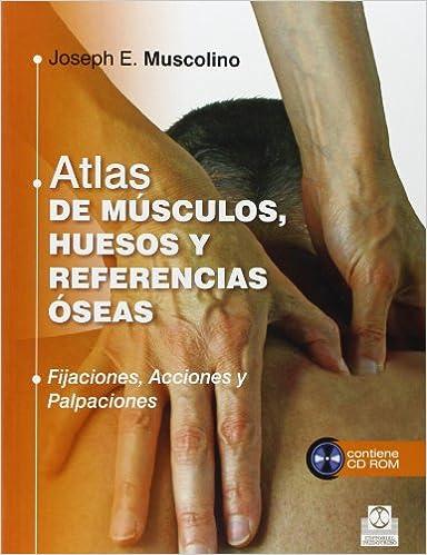 Atlas De Músculos, Huesos Y Referencias Óseas Medicina: Amazon.es ...