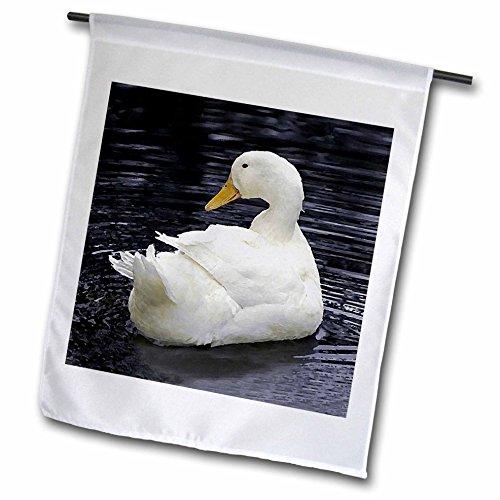 [3dRose fl_4232_1 White Pekin Duck Garden Flag, 12 by 18-Inch] (White Pekin Duck)