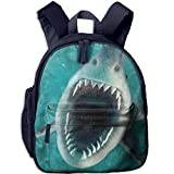 french bulldog stuff animal - Scary Shark Bite Kids Unique Book Bag For Students