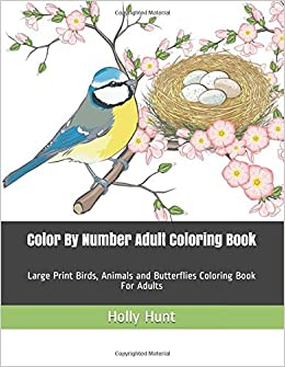 Amazon.com: Color By Number Adult Coloring Book: Large Print ...