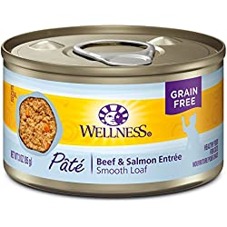 Wellness Natural Grain Free Wet Canned Cat Food, Beef & Salmon, 3-Ounce Can (Pack Of 24)