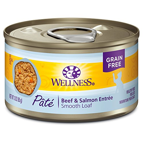 in Free Wet Canned Cat Food, Beef & Salmon, 3-Ounce Can (Pack of 24) (Beef Liver Food)