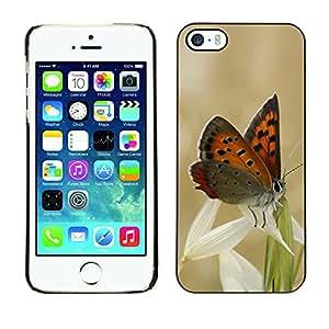 Be Good Phone Accessory // Dura Cáscara cubierta Protectora Caso Carcasa Funda de Protección para Apple Iphone 5 / 5S // Butterflies and grass