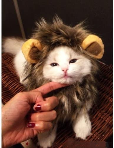 DOGLOVEIT Lion Mane for Cat Appreal, Pet Costume Lion Wig for Dog Cat Halloween Pet Dress up with Ears 15