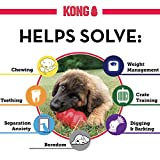 KONG - Classic Dog Toy, Durable Natural Rubber- Fun