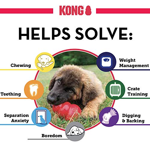 KONG - Classic Dog Toy - Durable Natural Rubber - Fun to Chew, Chase and Fetch