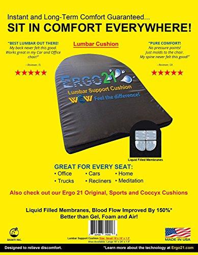 Ergo21 Lumbar Support Cushion Liquid Filled product image