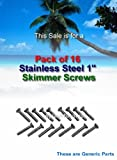 Hayward Stainless Steel Skimmer Screws Pack of 16 SPX1084Z4A