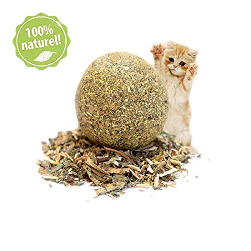 Organic Cat Toy (Natural Catnip Ball, 100% Organic Matatabi (Silver Vine), Cat Teeth Cleaning Toys)