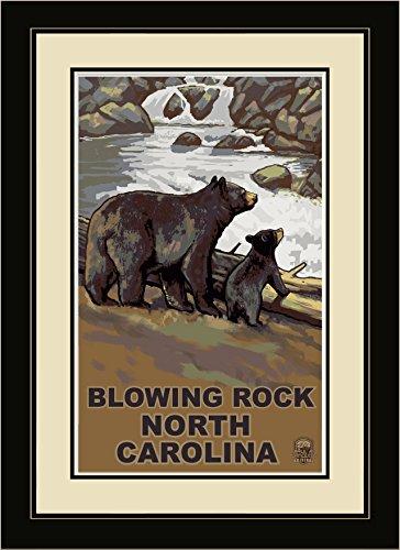 Northwest Art Mall BCF Blowing Rock North Carolina Bear Cub Falls Framed Wall Art by Artist Paul A. Lanquist, 16