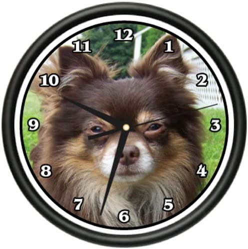 Long Hair Chihuahua Wall Clock Dog Doggie pet Breed Gift