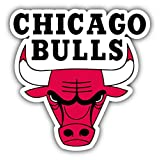Chicago Bulls NBA Basketball Logo Vinyl Sticker 5 X 5 inches