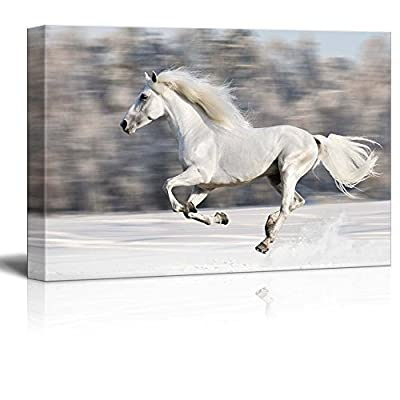 Professional Creation, Alluring Visual, White Horse Runs Gallop in Winter Wall Decor