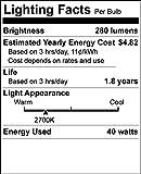 40 Watt T10 Clear Tubular Incandescent Light
