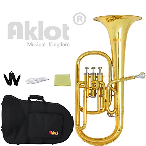 AKLOT Intermediate Eb Alto Horn Gold Silver Plated Mouthpiece Stainless Steel Piston with Case for Musical Education by AKLOT