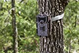 Bushnell 14MP Trophy Cam HD Aggressor No Glow Trail Camera