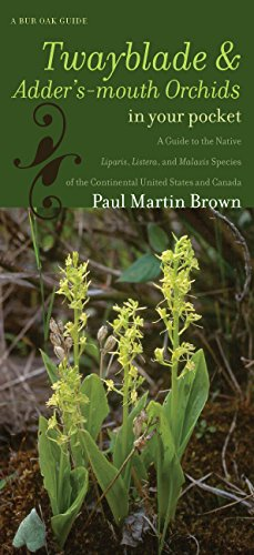 Twayblades and Adder's-mouth Orchids in Your Pocket: A Guide to the Native Liparis, Listera, and Malaxis Species of the Continental United States and Can (Bur Oak Guide)
