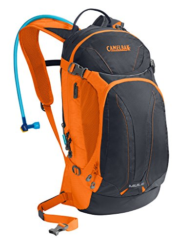 CamelBak M.U.L.E. Hydration Pack, Parisian Night/Exuberance