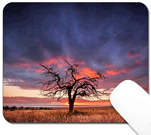 MSD Mouse Pad with Design - Non-Slip Gaming Mouse Pad - Image ID 23653201 Silhouette of a Tree in The Flinders Ranges South Australia