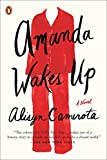 Amanda Wakes Up: A Novel by  Alisyn Camerota in stock, buy online here