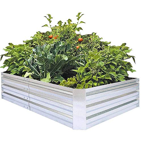 - Galvanized Raised Garden Beds for Vegetables Large Metal Planter Box Steel Kit Flower Herb, 6x3x1ft