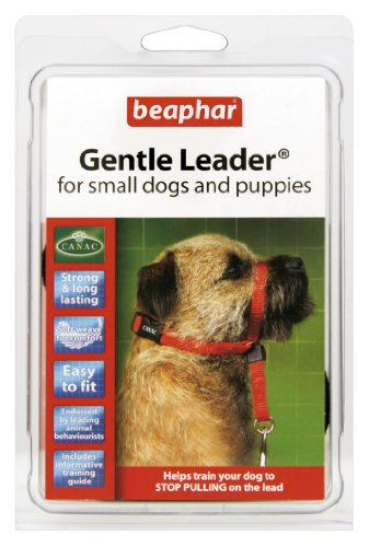 Beaphar Gentle Leader Small Red by BEAMY