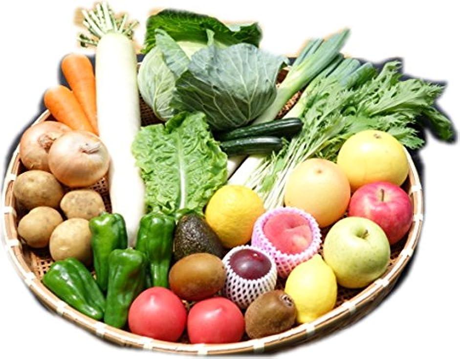 科学欺くアンソロジー新鮮野菜通販岡山県産(農業女子のおまかせ野菜セット?一部無農薬)4人約1週間分?13品 … (野菜10種類)