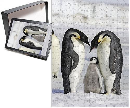 Baby Emperor Penguin Chick - 9