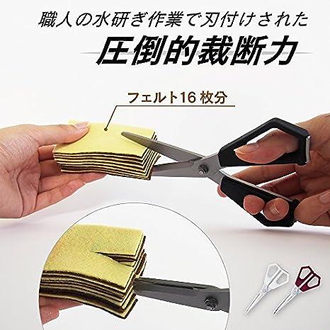 Amazon.com: Primera clase tijeras por Carl xscissors acero ...