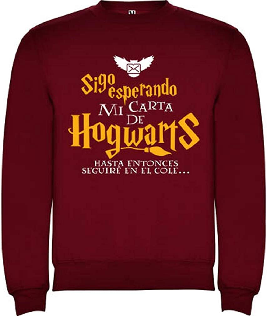 Sudadera ni/ño//a Harry Potter Carta