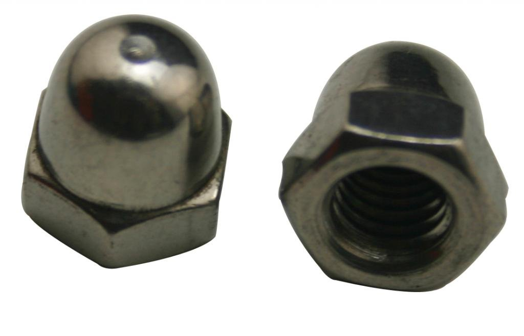 Amanaote 304 Stainless Steel Standard Type M6 Dome Nuts Blind Nuts Cap Nuts(Pack Of 10)