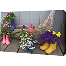 """Alaska, Homer Rubber boots used as flower pots by Dennis Flaherty - 10"""" x 16"""" Gallery Wrapped Giclee Canvas Art Print - Ready to Hang"""