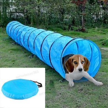 Bazaar Pet Dog Agility Obedience Training Tunnel Pet Channel Dog Outdoor Games Agility Exercise Obedience