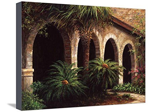 ArtEdge Sago Arches by Art Fronckowiak, Canvas Wall Art, Size 20W x 15H (Arches Sago)
