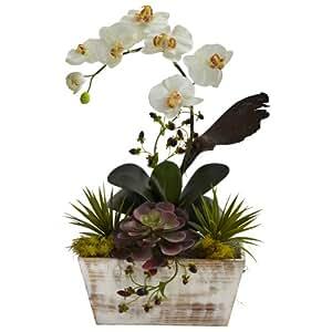 SKB Family Orchid & Succulent Garden W/White Wash Planter Natural Floral Home Decor
