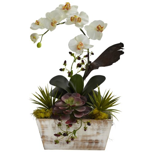 Nearly Natural 1326 Orchid and Succulent Garden with White Wash Planter, White (Artificial Arrangement Orchid)