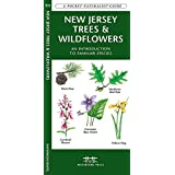 New Jersey Trees & Wildflowers: A Folding Pocket Guide to Familiar Species (A Pocket Naturalist Guide)