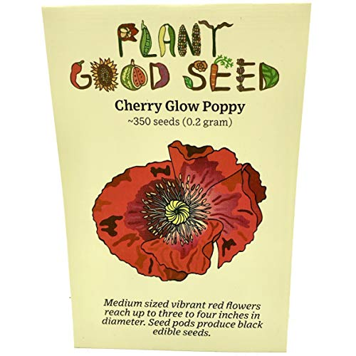 Cherry Glow Afghan Poppy Seeds (~350): Non-GMO, Heirloom, Open Pollinated Seeds from The United States