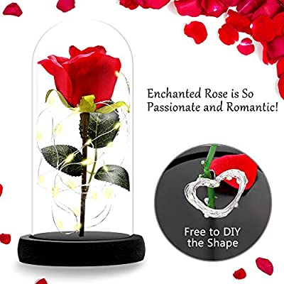 Kit de Rosas, ASANMU Bella y la Bestia Rosa de Seda Roja y luz LED ...