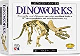 Skullduggery Eyewitness Kits Perfect Cast Dinoworks 15'' Triceratops Cast, Paint, Display and Learn Craft Kit