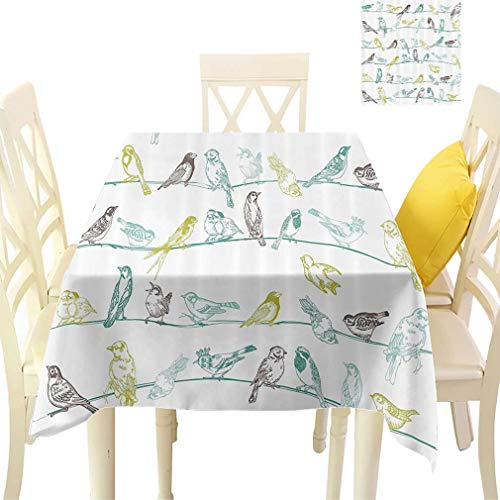 - Apartment Decor Tablecloths, Various Type of Birds Sitting and Chirping on the Wires Musical Creatures Decor Rectangular Fabric Table Cloths for Dining Room Kitchen, 60'' x 84'' Light Green Brown