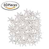 #9: 40 Pcs Starfish White Resin Pencil Finger Sea Star for Wedding Party Christmas, Home and Craft Project