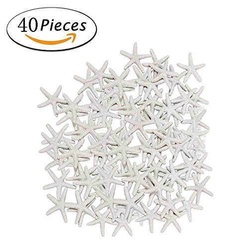 White Star Ornament (40 Pcs Starfish White Resin Pencil Finger Sea Star for Wedding Party Christmas, Home and Craft Project)
