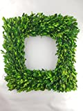 Preserved Boxwood Square Wreath - 17""
