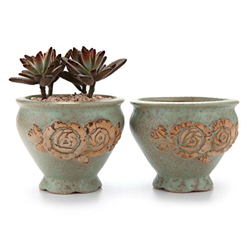 T4U 4″ Embossed Pattern Cup Sucuulent Cactus Plant Pots Flower Pots Planters Containers Window Boxes Green 1 Pack of 2 For Sale